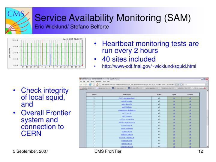 Service Availability Monitoring (SAM)