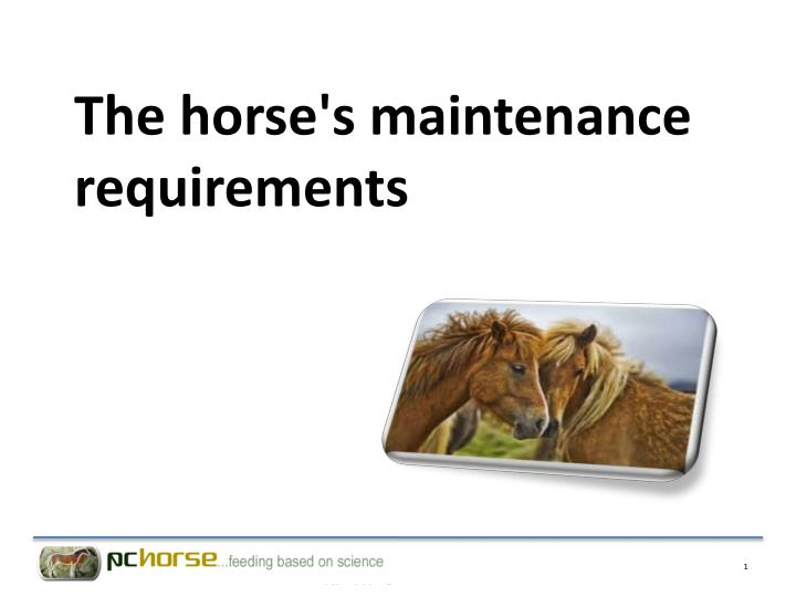 the horse s maintenance requirements n.