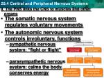 ii the pns links the cns to muscles and other organs