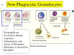 non phagocytic granulocytes