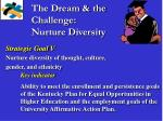 the dream the challenge nurture diversity