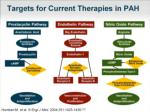 targets for current therapies in pah
