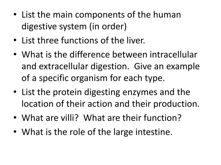 Ppt List The Main Components Of The Human Digestive System In