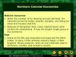 northern colonial economies1