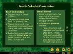 south colonial economies1