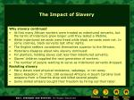 the impact of slavery1