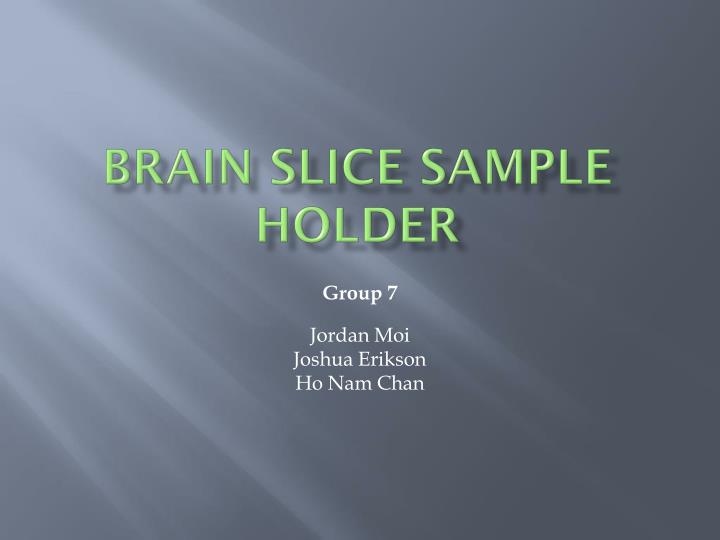 brain slice sample holder n.