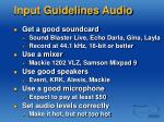 input guidelines audio
