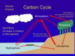 carbon cycle3