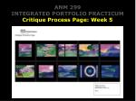 anm 299 integrated portfolio practicum critique process page week 5
