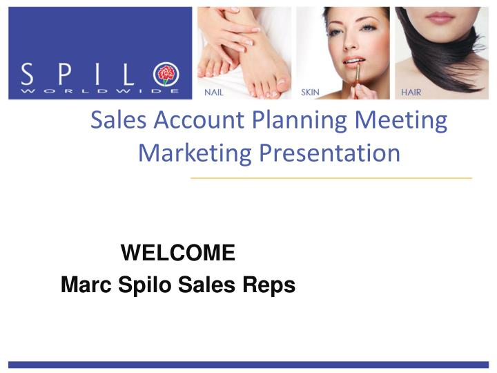 sales account planning meeting marketing presentation n.