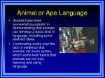 animal or ape language