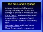 the brain and language