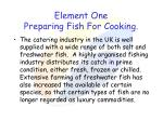 element one preparing fish for cooking