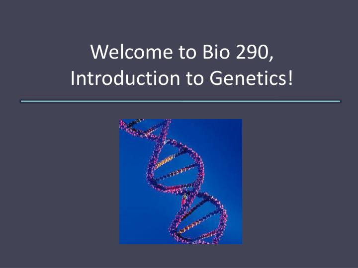 welcome to bio 290 introduction to genetics n.