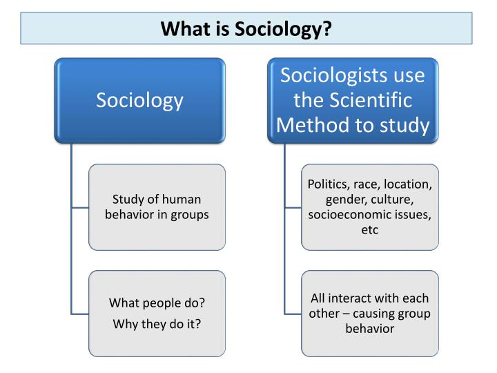 what is sociology anyway Sociology exam semester exam study person who is not prejudiced but discriminates anyway because of societal pressure founder of sociology.