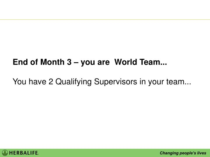 End of Month 3 – you are  World Team...