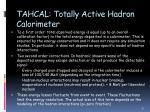 tahcal totally active hadron calorimeter