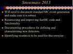 snowmass 20132