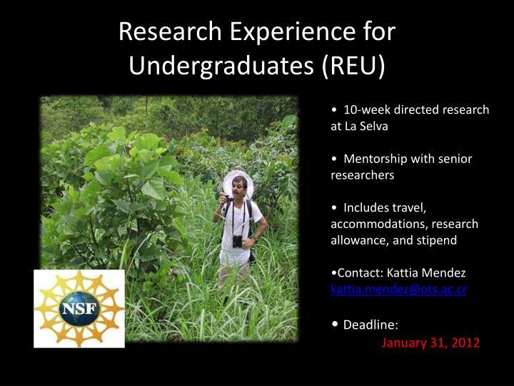 Research Experience for Undergraduates (REU)