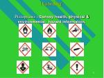 labelling pictograms convey health physical environmental hazard information