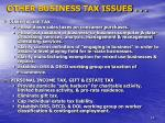 other business tax issues