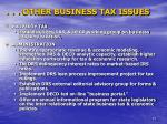 other business tax issues1