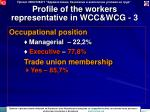 profile of the workers representative in wcc wcg 3