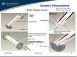 damping ring progress5