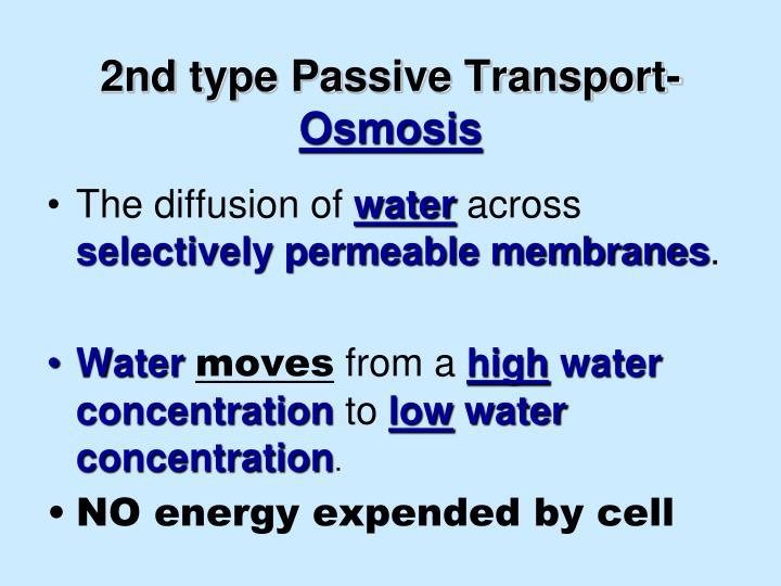 2nd type Passive Transport-