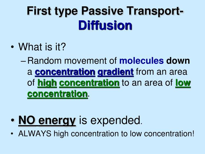 First type Passive Transport-