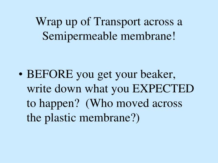Wrap up of Transport across a  Semipermeable membrane!