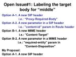 open issue 1 labeling the target body for middle
