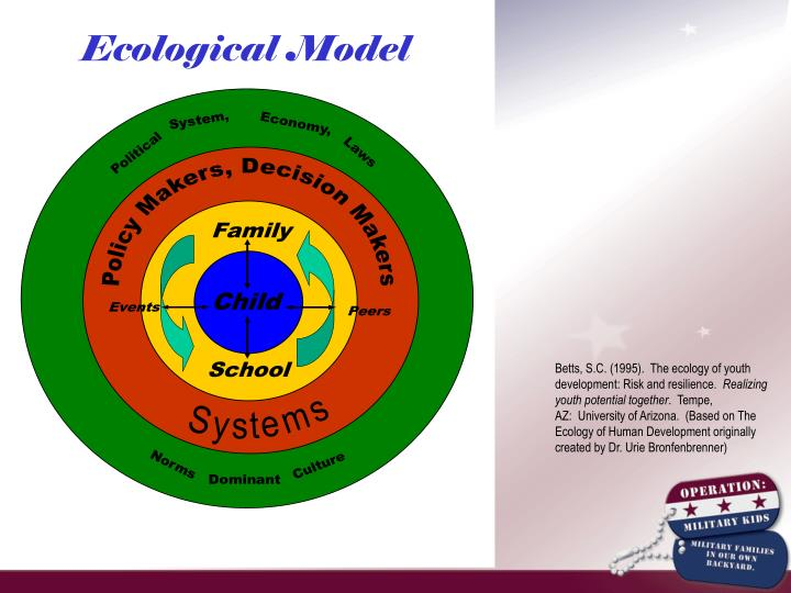 Betts, S.C. (1995).  The ecology of youth development: Risk and resilience.