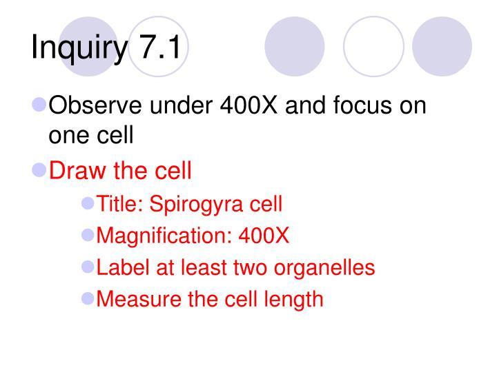 Inquiry 7.1