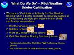 what do we do pilot weather briefer certification
