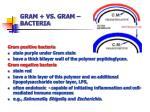 gram vs gram bacteria