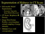 segmentation of kidneys in ct scans