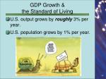 gdp growth the standard of living1