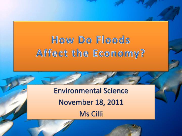 how do floods affect the economy n.