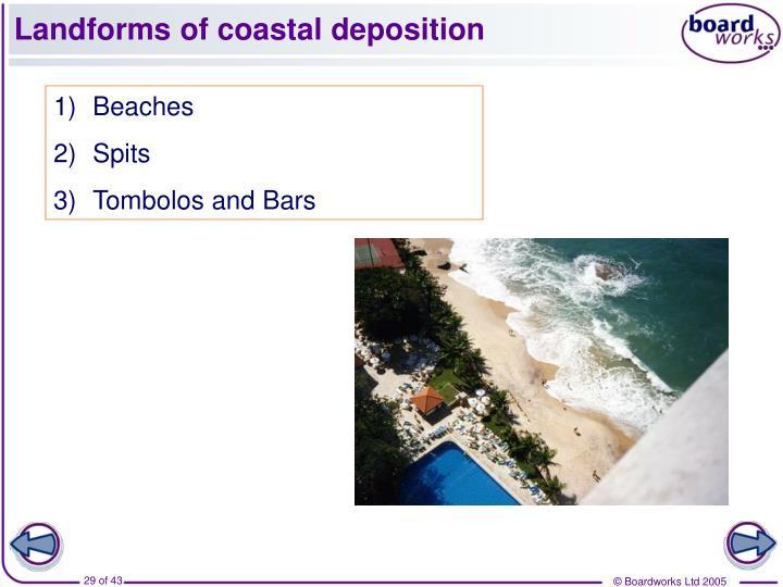 Landforms of coastal deposition