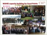wahis capacity building for focal points1