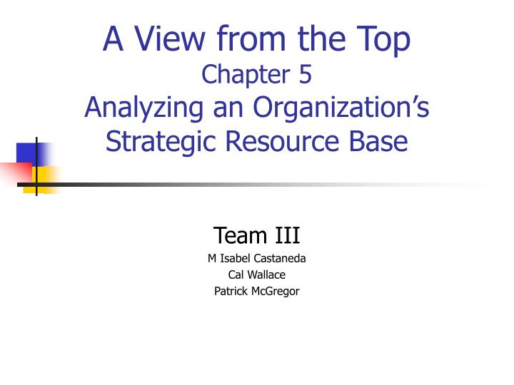 a view from the top chapter 5 analyzing an organization s strategic resource base n.