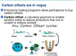 carbon offsets are in vogue