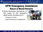 ofw emergency assistance2