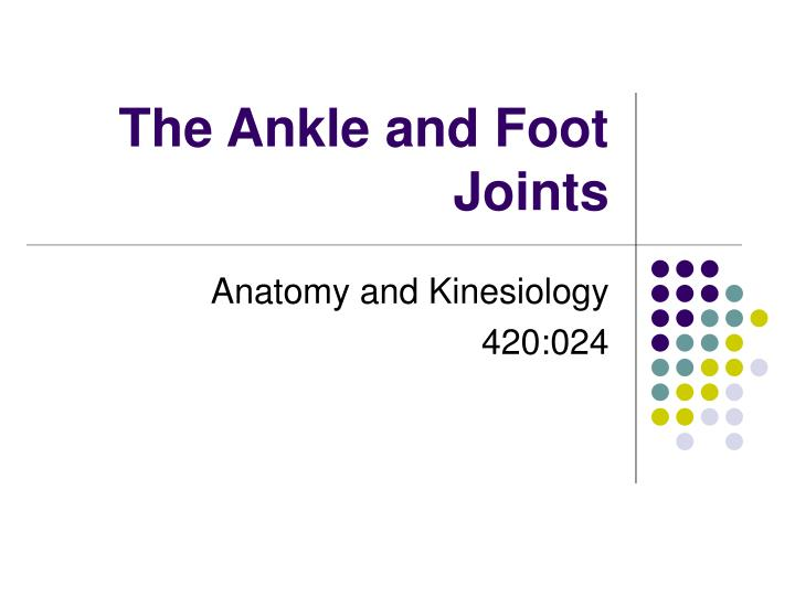 the ankle and foot joints n.