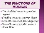 the functions of muscles