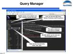 query manager3