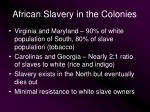 african slavery in the colonies