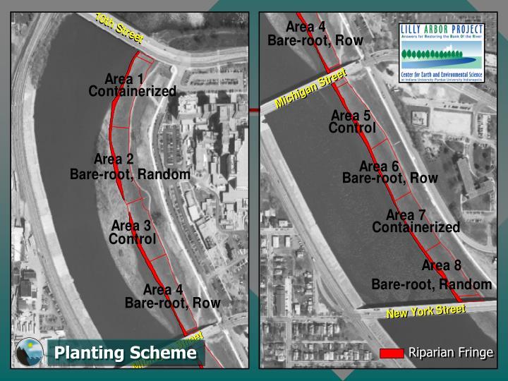 Planting Scheme